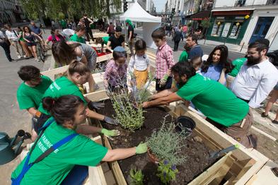 Plantations dans le mobilier-jardinière avec les habitants