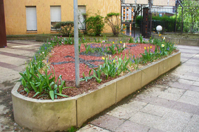 atelier jardinage 6.jpg
