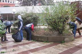 defrichage des jardinieres2.jpg
